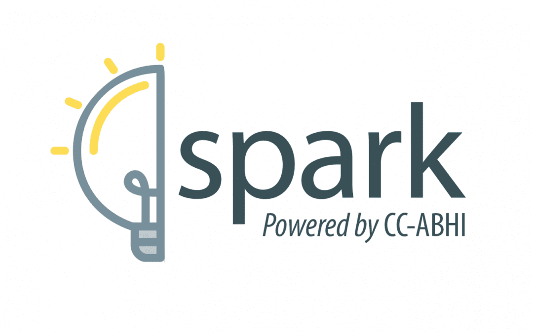 Spark innovation young onset dementia Canada